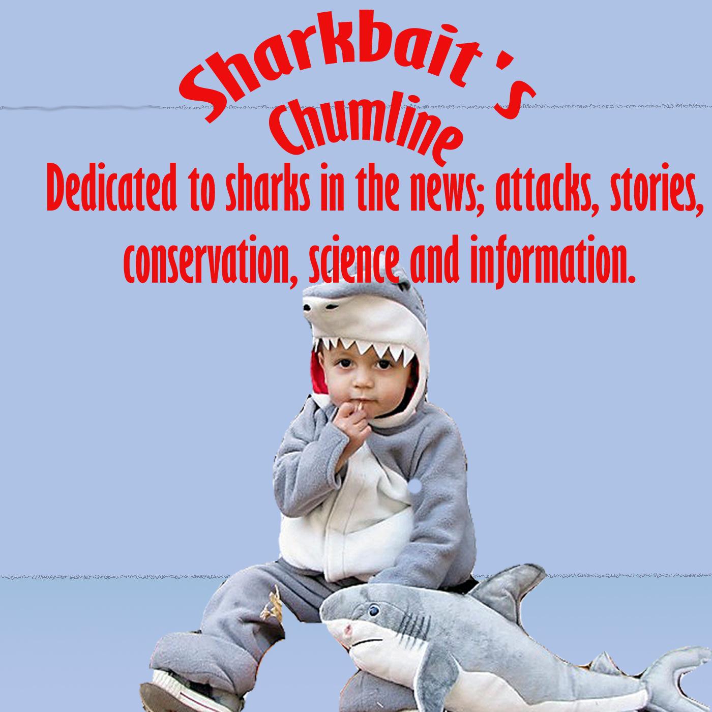 Sharkbait's Chumline